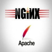 نصب Nginx و Apache روی دایرکت ادمین و سی پنل