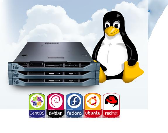 14419820399419 کانفیگ سرور لینوکس بدون کنترل پنل