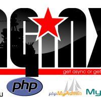 کانفیگ وب سرور انجین ایکس Nginx