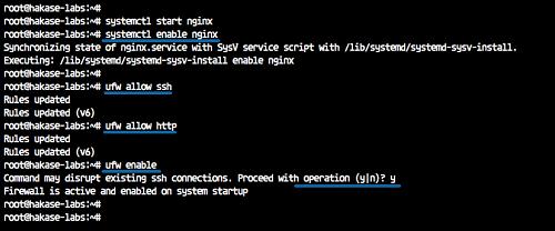 15568340999412 آموزش نصب و کانفیگ وب سرور Nginx به همراه Php و Mysql در سرور لینوکس