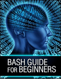 15579481505643 Bash Guide for Beginners