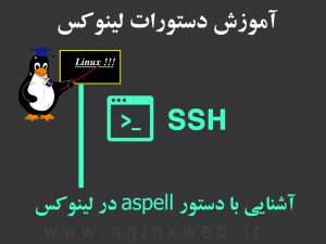 15600593834750 300x225 aspell command