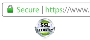 15617159641548 300x134 SSL Security Secure Lock Icon