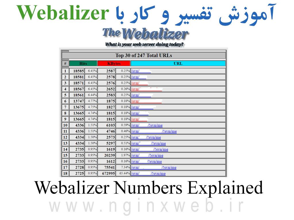 15686979586384 آموزش کار با آمارگیر Webalizer و تفسیر اعداد و آمار دقیق ترافیک